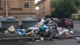 Петербуржцы пожаловались на зловонную кучу мусора ...