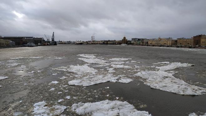 В среду в Петербурге будет дождливо и тепло