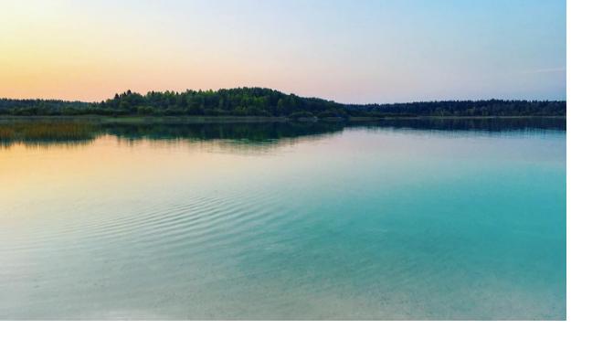 Волонтеры и муниципалы привели в порядок озеро Донцо в Волосовском районе
