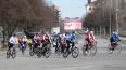 В Выборге состоится VIII велопробег по улицам города