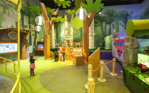 День знаний в Angry Birds Activity Park