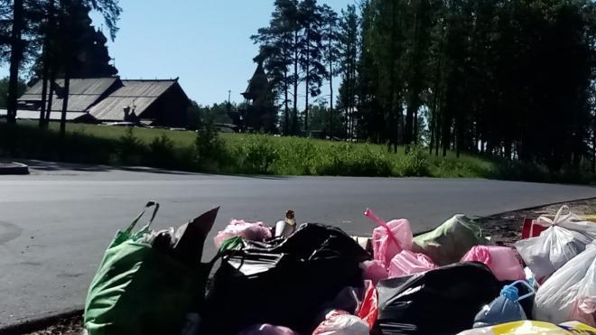 Жители Ленобласти жалуются на мусор недалеко от Новосаратовки