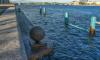 Убежавший в шторм гранитный шар на Воскресенской набережной вернули на место