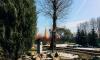 Зимой в Петербург туристов будут завлекать программой лояльности