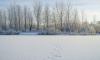 За неделю дорожные службы убрали в Петербурге более 100 тысяч кубометров снега