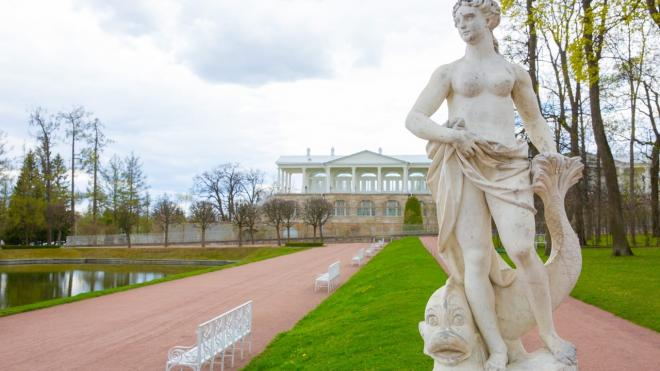 """Царскосельские статуи начали готовить к зимней """"спячке"""""""
