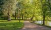 В Гатчине установят светящийся артобъект