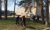 В Полянском поселении прошел субботник: за грабли взялись глава администрации и поселения