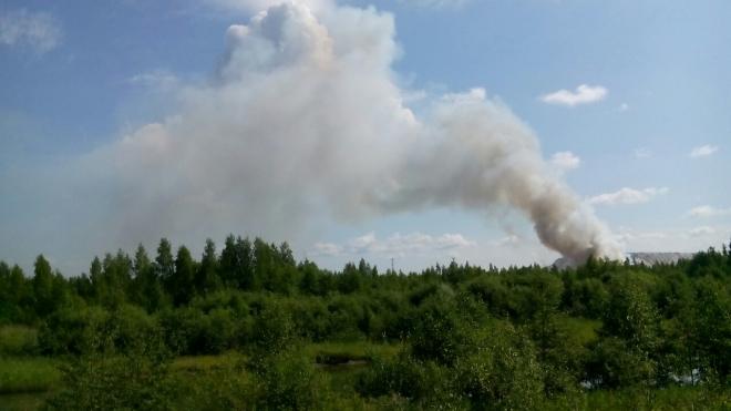 В Кингисеппском районе до сих пор горит свалка