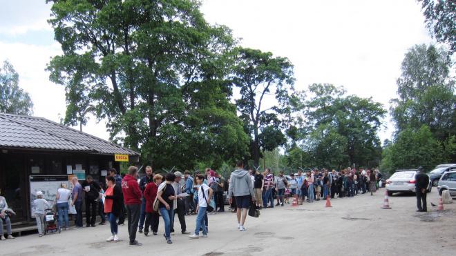 Аншлаг в выходные перед кассой парка Монрепо удивил посетителей