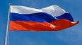 Бизнесмен Татаренков призвал российские власти обеспечить ...