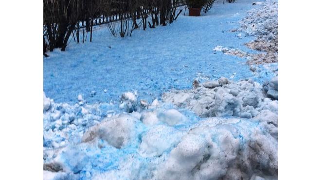 В Петербурге выпал синий снег