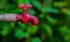 Новый «Водоканал» массово отключает воду выборгским организациям