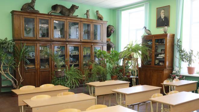 Школы в Петербурге закупили для учителей защитные экраны