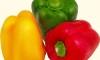 Европейцы просят «зеленый свет» на российский рынок для своих овощей