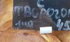 """Возле станции метро """"Купчино"""" продаются сочни с творогом и тараканами"""