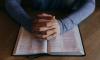 Петербургский школьник получил сотрясение мозга после удара книгой от учителя