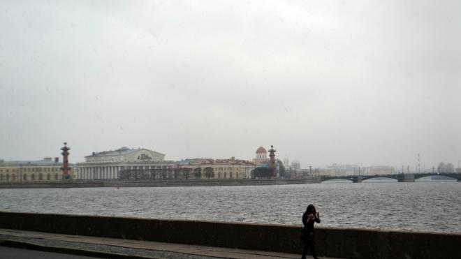 На Васильевском острове снова появились неприятные запахи