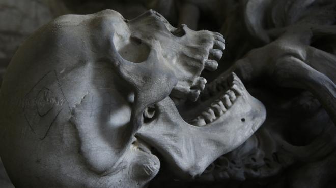 Скелет человека целый год лежал за гаражами на юге Москвы