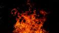 В пожаре на Иликовском проспекте в Ломоносове сгорел ...
