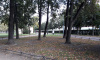 Петербуржец получил в суде предупреждение за прогулку в парке навеселе