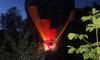 В Новой Ропше в лесу после падения застрял воздушный шар с молодожнами
