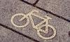 В Петербурге построили велодорожку, но не до конца