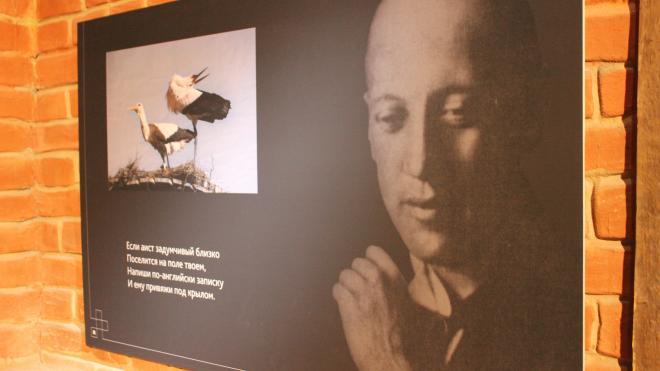 Петербургские музеи объединились, чтобы показать Восток глазами Гумилева