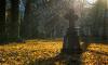 В Петербурге ФАС обнаружило сговор на торгах по освещению Богословского кладбища