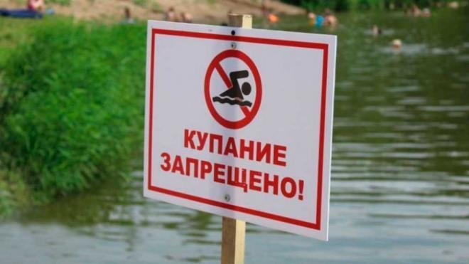 """""""Хочу купаться!"""". Почему петербургские водоёмы снова признали непригодными для плавания"""