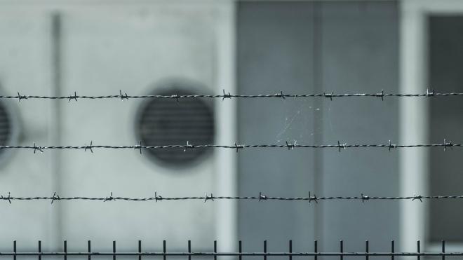 Вынесен приговор за расстрел петербургского бизнесмена