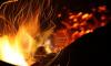 На севере Петербурга спасатели ликвидировали пожар в иномарке