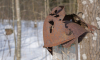 Губернатор Ленобласти подписал областной закон о найденных захоронениях