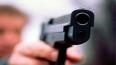 Челябинский водитель маршрутки расстрелял своего коллегу