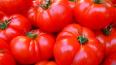 В Петербург не пустили 200 тонн зараженных томатов ...