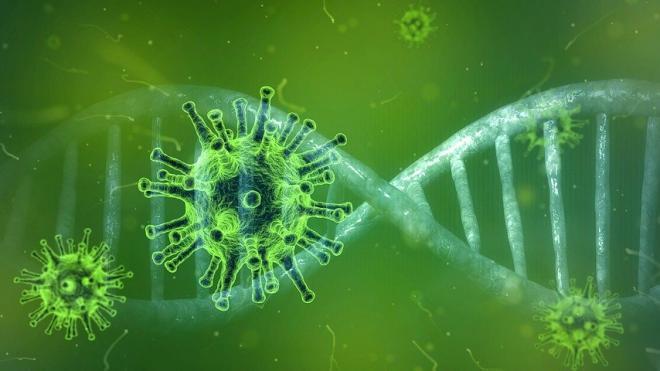 В России зафиксировано 5 394 новых случая заражения коронавирусом