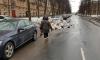 Петербург пообещали очистить от мусора за семь дней