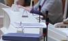 Элла Памфилова: в Петербурге дачные участки не станут местом для голосования