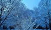 Первый день зимы в Петербурге: К снегу с дождем добавился сильный ветер