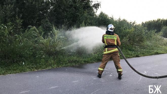 Стало известно, что причиной неприятного запаха в лесополосе на юго-западе города был аммиак