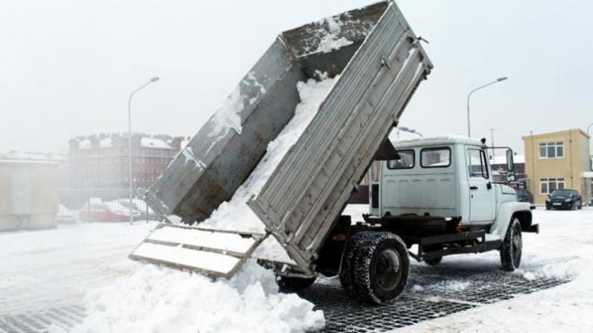 Не опять, а снова: в Петербурге в ночь на 21 марта ожидается снегопад