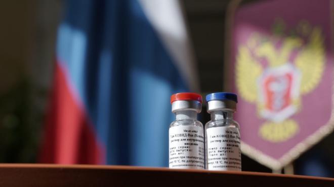 """В """"Векторе"""" рассказали об анализе штаммов коронавируса в России"""