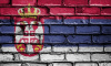 Петербург займется просвещением россиян в Белграде