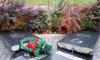 В Колпино разгромили памятник жертвам радиационных катастроф