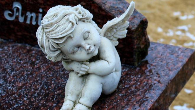 Екатерининский дворец в Царском селе снова будут охранять ангелы