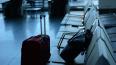Марокканцев депортировали из России за прятки с полицией