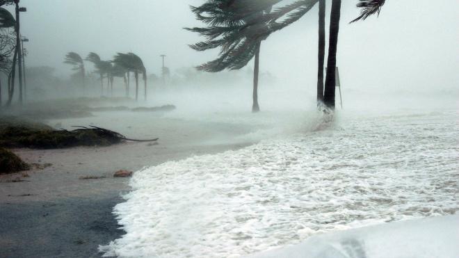 """В Индии свирепствует самый мощный за последние 20 лет ураган """"Фани"""""""