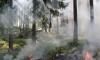 Небольшой пожар у Пулково напугал пассажиров самолетов