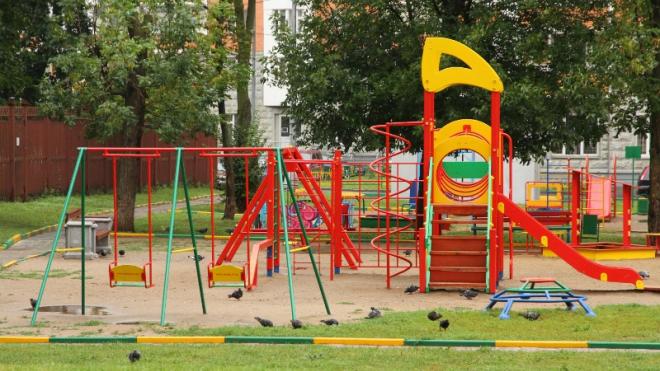 Пропавшего в Петербурге мальчика нашли в 25 км от детской площадки