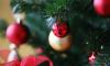 Россияне планируют потратить почти 17 тысяч рублей на новогодний стол и подарки